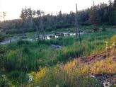 Moose pit