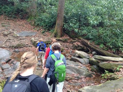 Trillium trail 1