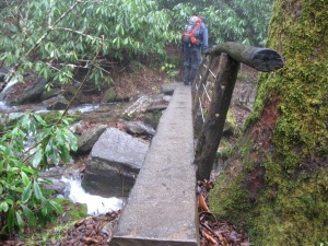 Log bridge